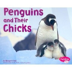 Penguins_and_Their_Chicks book cover image