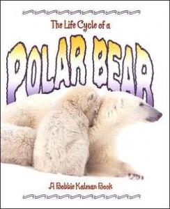 _polar_bear book cover imagea