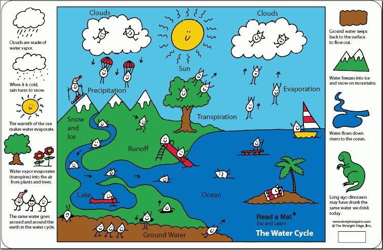 watercycleplacemat image this image of the water cycle - Simple Water Cycle Diagram