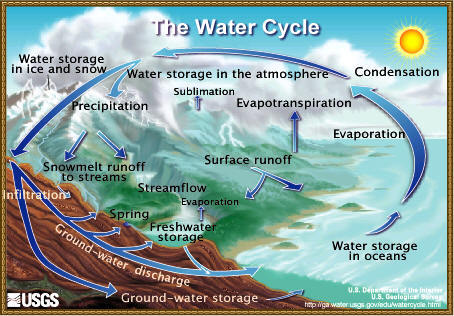 Diagram showing flow and transformation of water on and above Earth
