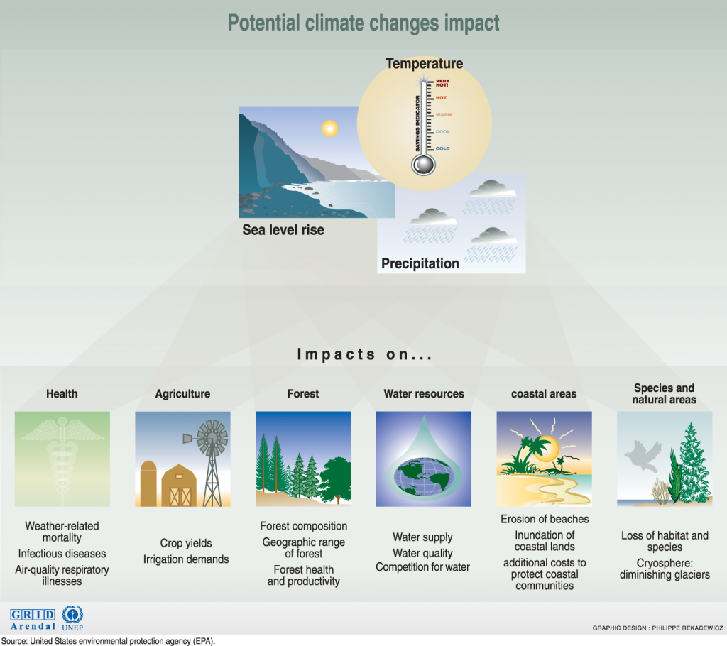 the issue of the greenhouse effects in the rainforests Under the un climate change negotiations, a plan has been developed to facilitate bilateral projects between industrialised and developing countries to reduce the emissions of greenhouse gases in the south and increase carbon sinks', such as forests, which can absorb carbon dioxide.